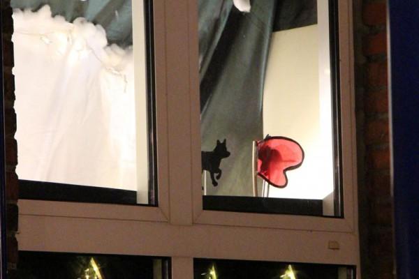 Adventsfenster am 3. Dezember
