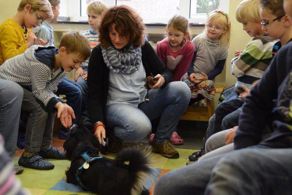Die Ludgerischule begrüßt Schulhund Amy