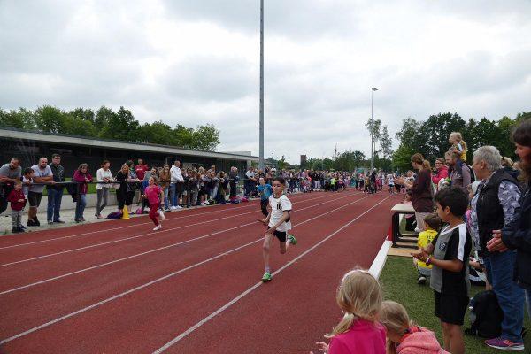 Sportfest der Ludgerischule